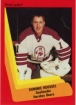 1990-91 ProCards AHL/IHL / Dominic Roussel
