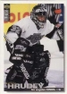 1995-96 Collector's Choice #147 Kelly Hrudey