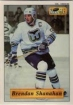 1995/1996 Imperial Stickers / Brendan Shanahan