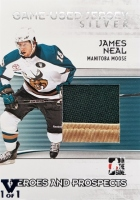 2009-10 ITG Heroes and Prospects Game Used Jerseys Silver #M18 James Neal