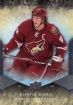 2008-09 Upper Deck Ovation #88 Shane Doan