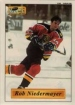 1995/1996 Imperial Stickers / Rob Niedermayer
